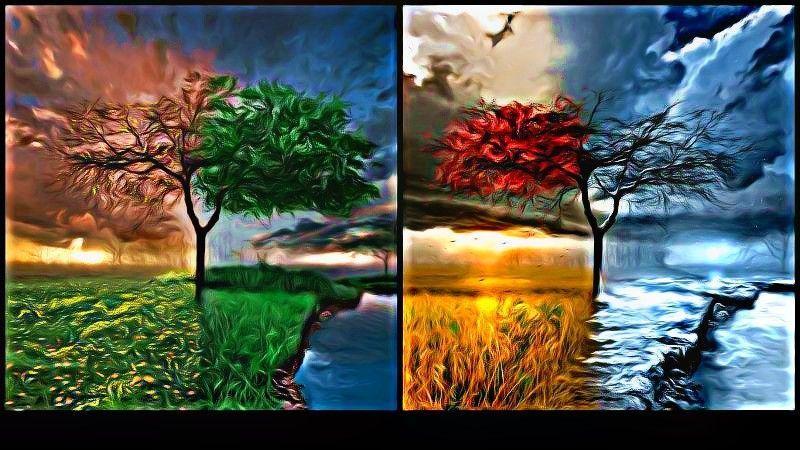 Seasons-Wallpaper-flowersforever-21927336-800-450